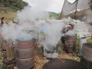 Chiang Mai: kleine NGO kämpft gegen den Smog