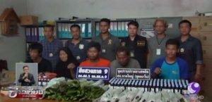 Songhkla: Familie handelte im grossen Stil mit Drogen