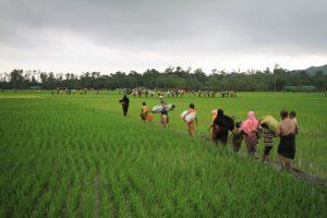 Rohingyas könnten über Ranong und Phang Nga nach Thailand flüchten