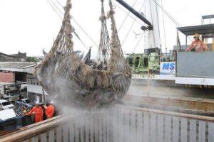 EU wird Fischer-Industrie in Thailand überprüfen
