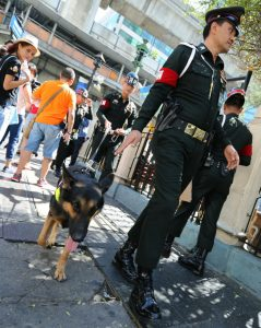 epa04889707 Thai military policemen patrol with military dog 'Ken', which has a camera mounted on his back, as they inspect for security the area around the Erawan Shrine, after a bomb detonated on 17 August, in central Bangkok, Thailand, 20 August 2015. The Erawan shrine reopened to the public on 19 August, two days after a deadly bombing left 20 dead, including many foreigners, and injuring 123. A Thai court issued an arrest warrant on 19 August, for a man suspected of carrying out the bomb attack. The warrant does not name the suspect.  EPA/NARONG SANGNAK