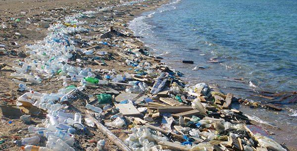 Verschmutzte Meere